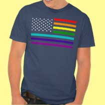 UNITED STATES OF EQUALITY RAINBOW FLAG TEES